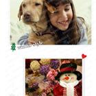 상세 christmas style_set