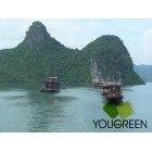 베트남하롱베이바다풍경04