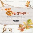 Autumn_2015_04