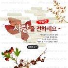 Autumn_2015_07