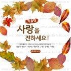 Autumn_2015_16