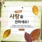 Autumn_2015_21