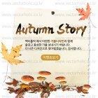Autumn_2015_23