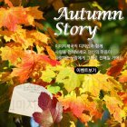 팝업_autumn_2015_20