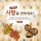 Autumn_2015_30