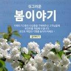 Spring_2016_N_09_b