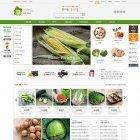 EL876 ★유기농농산물