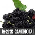 상세페이지 농산물