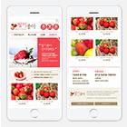 딸기좋아 M ■ 농산물