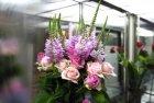 장미꽃 9