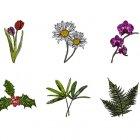 식물 아이콘 5