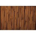 대나무 패턴 5