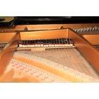 피아노 4
