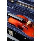 바이올린 101