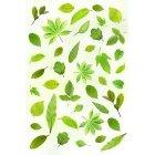 나뭇잎 이미지 1
