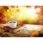 가을이미지 26
