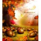 가을이미지 31