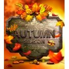 가을이미지 37