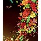 가을이미지 51