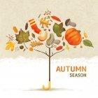 가을이미지 83