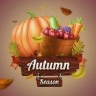 가을이미지 81