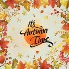 가을이미지 107
