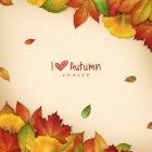 가을이미지113