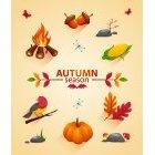 가을이미지 129