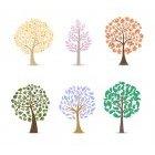 나무이미지 7