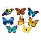 나비 아이콘 2