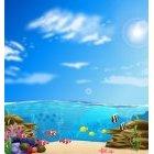 바닷속 풍경 4