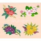 꽃이미지 53