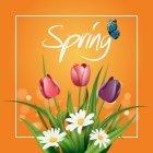 봄이미지 124