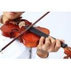바이올리니스트 14