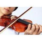 바이올리니스트 15