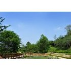 공원 138
