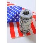 달러와 국기 26