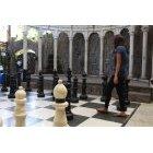 체스 49