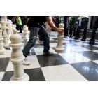 체스 50