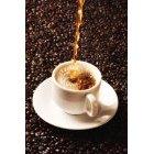 커피 231