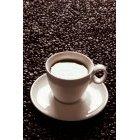 커피 320