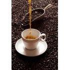 커피 334