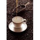 커피 332