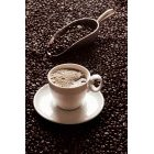 커피 333
