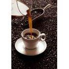 커피 335