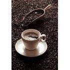 커피 339