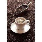 커피 323