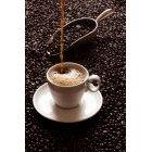 커피 324