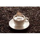 커피 401