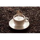 커피 402